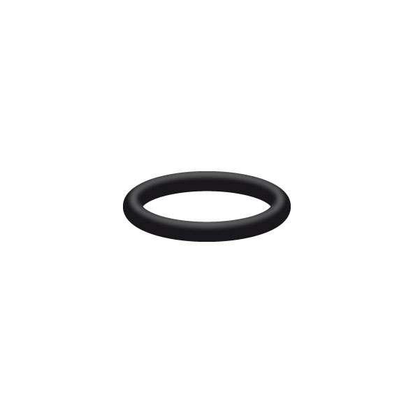 O-Ring 21x2,5